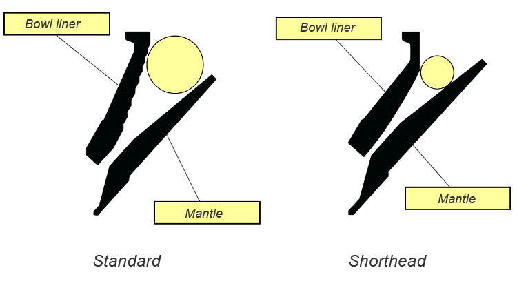 Standard and Short Head