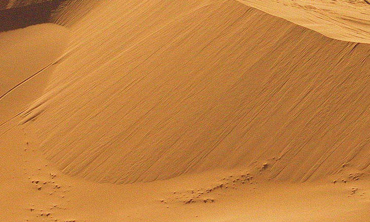 Can Desert Sand be Used for Concrete